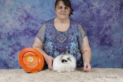 Saturday Jersey Wooly Specialty - Open Best of Breed